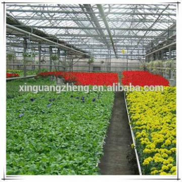 Modern planting industry galvanized steel structure greenhouse for planting